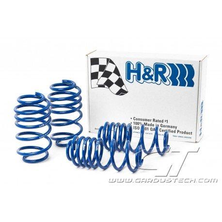 H&R lowering springs
